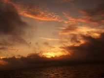 Florida sunsets royalty free stock images