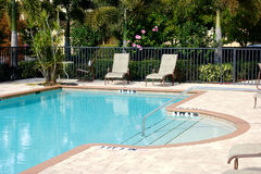 Free Florida Swimming Pool Royalty Free Stock Photo - 12721785