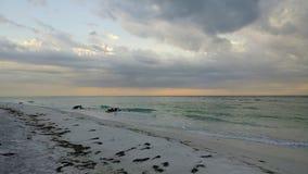 Florida sydvästlig solnedgångsikt, stränder Royaltyfria Bilder