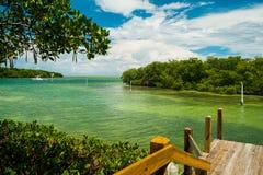 Florida tangenter Arkivbilder