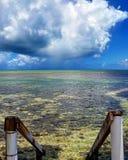 Florida tangentvatten Arkivbilder