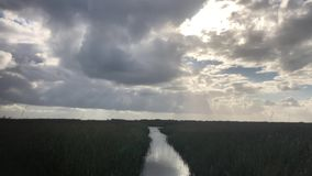 On The Bayou Late Afternoon. In Florida traveling the Bayou on a late afternoon. Very Relaxing day stock footage