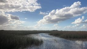 On The Bayou Late Afternoon. In Florida traveling the Bayou on a late afternoon. Very Relaxing day stock video