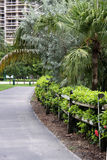 Florida Walking Path. Tropical Florida walking path. Has wooden fence, green shrubs, palm trees and buildings in the background Stock Photo