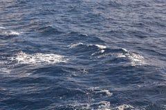 Florida-Wasser Lizenzfreie Stockfotos