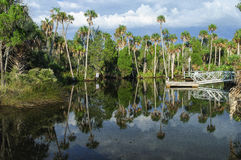Florida Waterway Stock Photos