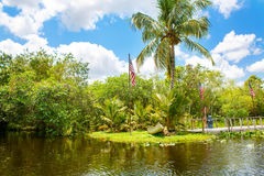 Florida wetland, Airboat ride at Everglades National Park in USA. Royalty Free Stock Photos