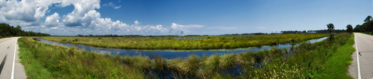 Florida Wetlands Panorama Royalty Free Stock Photo