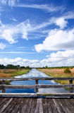 Florida wilderness canal stock photo