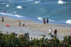 Floridians в зиме Стоковое фото RF