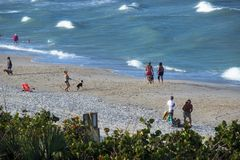 Floridians w zimie Zdjęcie Royalty Free