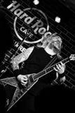 Florin Tibu Crivat que joga a guitarra-baixo Foto de Stock