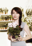 Florist Stock Photos