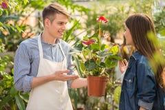 florist royalty-vrije stock foto