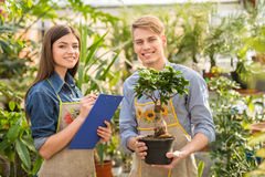 florist royalty-vrije stock foto's
