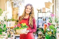 florist stock afbeelding