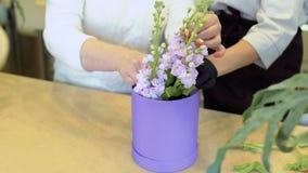 Florist and assistant create flower composition inside box with floristic sponge. Florist teach assistant to make flower composition. Woman wearing black stock video