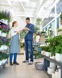 Florist Assisting Customer In Buying Bouquet Stock Photo