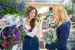 Florist Assisting Customer In Buying Flowers Royalty Free Stock Photo