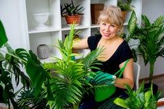 Florist bei der Arbeit im Gewächshaus Lizenzfreie Stockfotografie