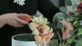 Florist cuts eucalyptus for flowers bouquets stock video