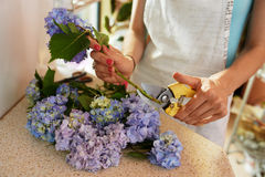 Florist cuts the stems of  flowers Royalty Free Stock Image