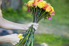Florist cutting flowers stems, closeup of female Stock Photo