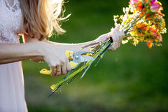 Florist cutting flowers stems, closeup of female Stock Images
