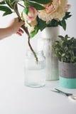 Florist, der Schnittblumen in einen Glasvase setzt Stockbilder
