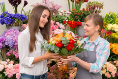 Florist displaying floral arrangements to the Stock Photography
