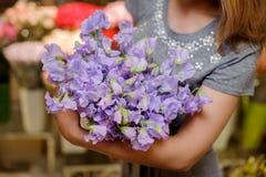 Florist in einem grauen Kleid, das einen schönen zarten purpurroten Blumenstrauß von Blumen hält Stockbild