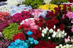Florist Stock Photo