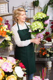 Florist with fresh flowers Royalty Free Stock Photos