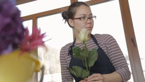 Florist in glasses clears white rose from dry petals at window. stock footage