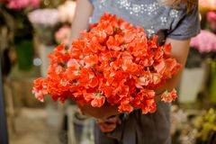 Florist in a grey dress holding a beautiful bright orange bouquet of flowers. Young florist in a grey dress holding a beautiful bright orange flower composition Stock Photography