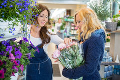 Florist Guiding Customer In Buying Flowers At Stock Image