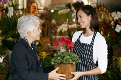 Florist Helping Senior Female Customer to Choose Plant Royalty Free Stock Photo