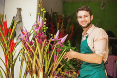 Florist in his flower shop Royalty Free Stock Photos
