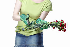 Florist holding bouquet of red carnations and garden shears. Stock Images