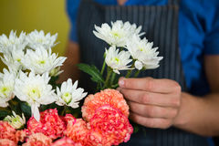 Florist holding flowers in florist shop Royalty Free Stock Photo