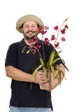 Florist holding red orchid. Bearded smiling florist holding red orchid in hands Stock Photography