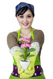 Florist holding and showing a flower Stock Photo