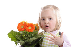 Florist: little girl with orange flowers Royalty Free Stock Photos