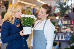 Florist Looking At Customer Smelling Flowers In Royalty Free Stock Photography