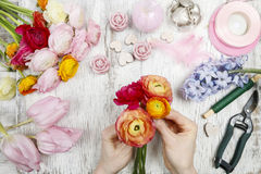 Florist making bouquet of persian buttercup flowers (ranunculus) Royalty Free Stock Photo