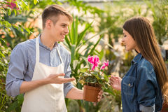 Florist. Male florist helping young female choosing the right flower Royalty Free Stock Photography