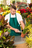 Florist man reading barcode potted plant shop. Market flower Royalty Free Stock Photo