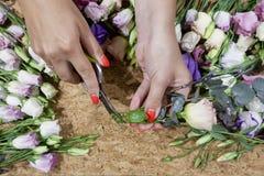 Florist& x27; mani di s con pruner immagine stock