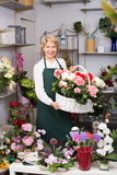 Florist with multicolored hortensia flowers Royalty Free Stock Images