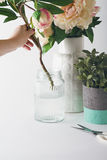 Florist placing cut flowers into a glass vase Stock Images